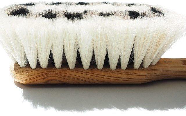 goat-hair-brush-592407_640