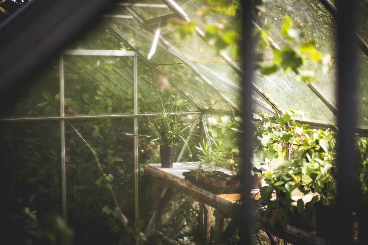 Installer un jardin pour donner un meilleur goût à votre propriété