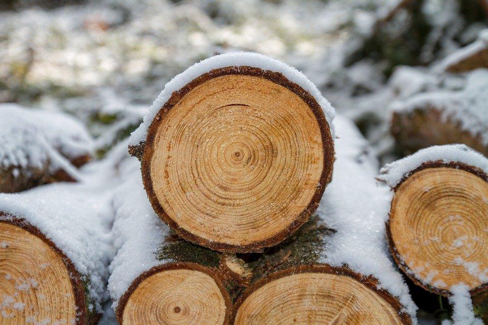 Comment avoir un excellent œuvre en bois ?
